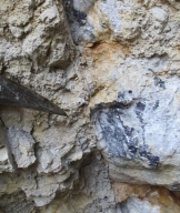 Photo 6:  A massive and approximately 40 cm wide barite/galena vein at the entrance of an exploration adit in the Sbor Main area developed by the Bulgarian State.