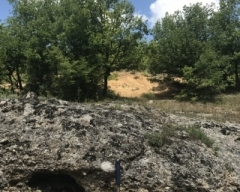 Photo 9:  An outcrop of unaltered Podrumsche conglomerate in the foreground and the overlying altered (brown) andesite in the background (Sbor West).