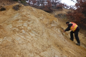 Photo 17:  Outcrop of intense argillic alteration in rhyolite in the White Cliff prospect area.