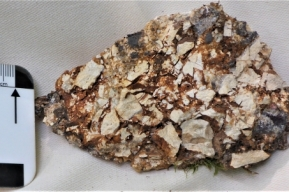 Photo 21:  Hydrothermally and tectonically brecciated rhyolite from the Belopoltsi prospect.