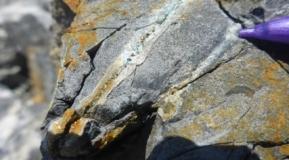 Photo 14: Quartz-sulphide veining – Zlatusha Permit.